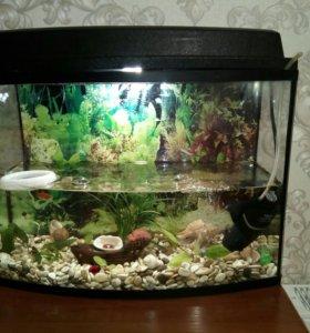 Аквариум с рыбками и с декором и компрессором