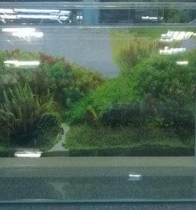 Новый аквариум 150 литров