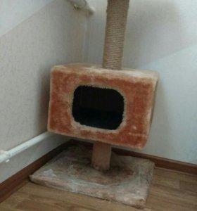 Домик и когтедралка для кошки