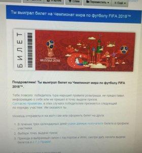 Билет по футболу Fifa 2018 в Сочи