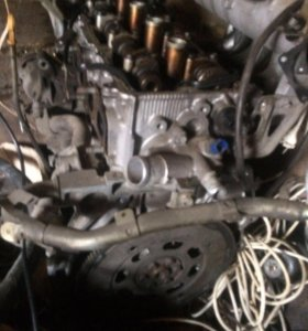 Двигатель ниссан хтраил Qr-20