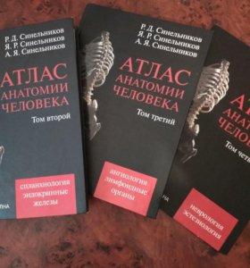 Атлас анатомии человека. Синельников Р.Д.