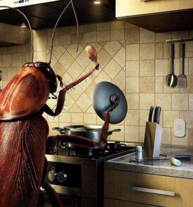 Уничтожение тараканов,клопов,и других насекомых.