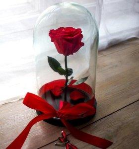 Роза в колбе 26см