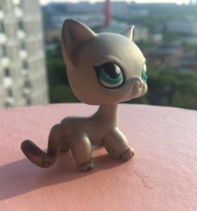 Littlest Pet Shop европейская кошка/стоячка