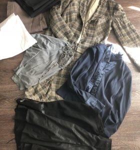 Женская одежда 48/50 брюки юбки костюм рубашка