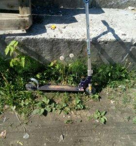 самокат скутер двухколесный