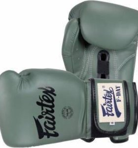 Боксерские перчатки FAIRTEX BGV11 F DAY