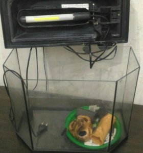 Аквариум 40 л + подсветка+ компрессор+камни