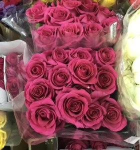 Розы по оптовой цене