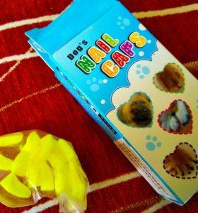 Колпачки на когти для котиков и кошечек