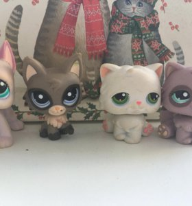 Lps лот/дог/персидские кошки/littlest pet shop