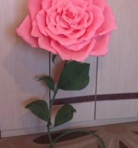 Цветок ростовой