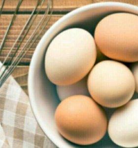 Домашние яйца крупные