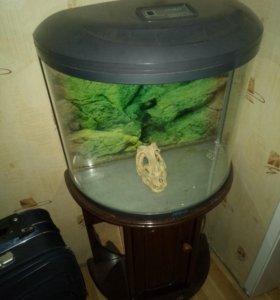 Продам аквариум (50-80 литров) торг