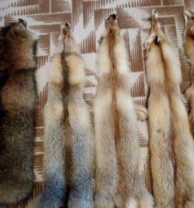 Шкуры выделанные лисы и енота
