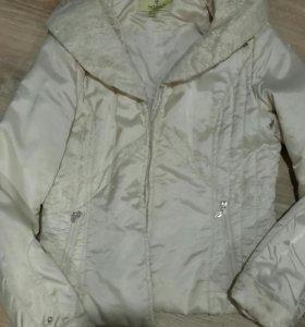 Куртка. Ветровки
