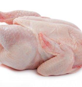 Домашние яйца и курица