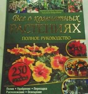 Все о комнатных растениях