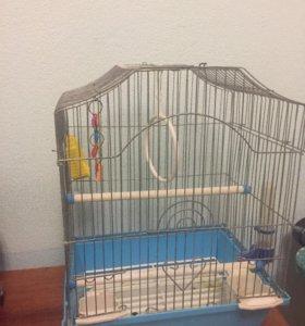 Клетка для малых попугаев