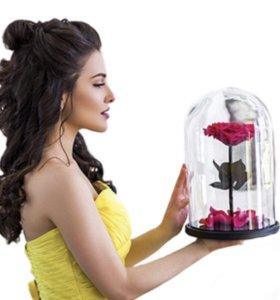 Вечная роза роза в Колбе подарок