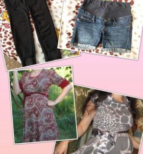 Одежда беременным