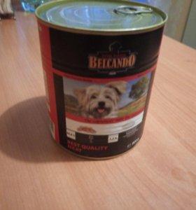 Консервированный корм для собак BELCANDO