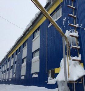 бизнес производство подгузников под ключ