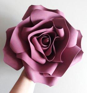 Цветы для создания фотозон.