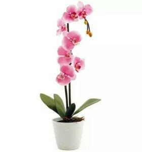Светодиодный светильник орхидея