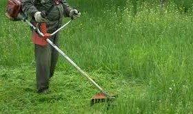 Покос травы дёшево