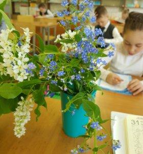Подготовка к школе+ нач.школа