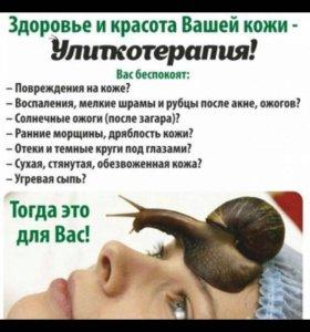 Улитотерария