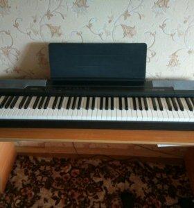 Электронное пианино Casio 100