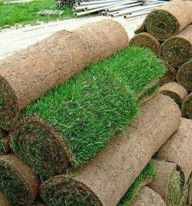 Рулонный газон, благоустройство