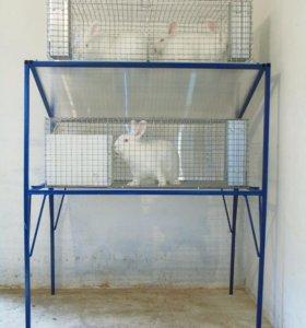 Новая клетка для кроликов
