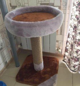 Когтеточка и домик для кота
