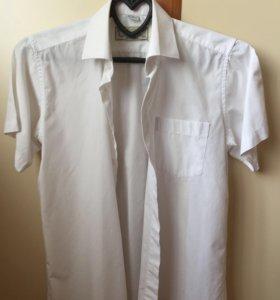 Рубашки 146-30