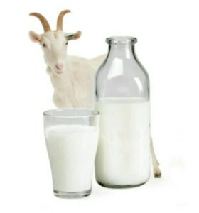 Козье молоко и яйца