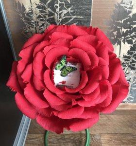 Роза с сюрпризом