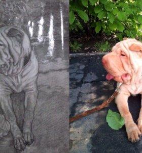 Портреты собак по фото