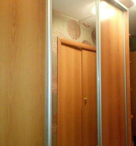 Шкаф купе ( гардероб)  с подсветкой