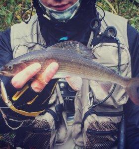 Тренер по спиннинговой ловле рыбы