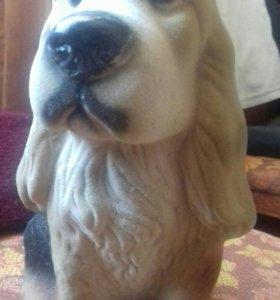 Собачка старенькая из коллекции