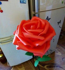 Ростовые цветы и светильники