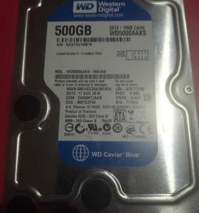 Hdd WD 500gb