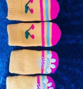 Маленькие носочки для собачек