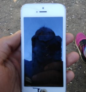Обменяю айфон 5