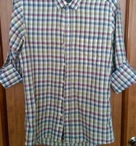 Мужская рубашка Alf sport