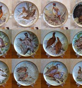 "Коллекция тарелок ""Gamebirds"" (полная)."
